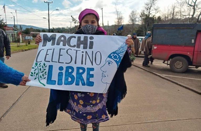 Comunicado Publico: 91 días en huelga de hambre de Machi Celestino Córdova (Esp/Ing)
