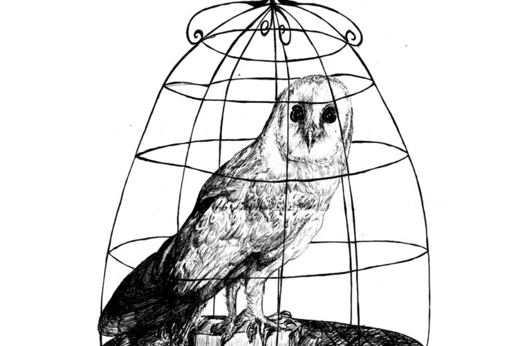 Dibujo de la compañera anarquista Mónica Caballero